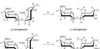 chemische Formel Carrageen E407