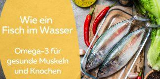 Fisch mit Omega-3