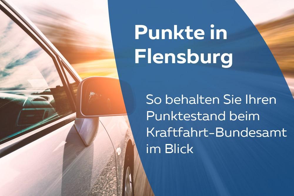 punkte in flensburg abfragen