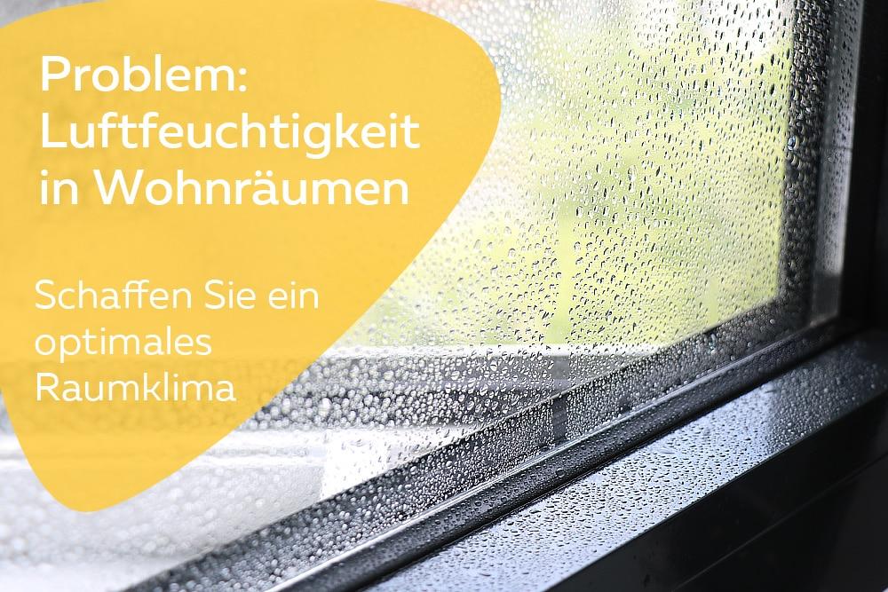 8 Tipps Um Die Luftfeuchtigkeit Zu Senken Schimmel Vermeiden