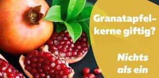 Granatapfelkerne giftig geöffneter Apfel