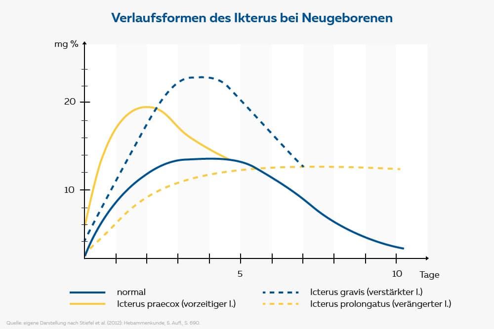 diagramm verlaufsform der gelbsucht bei neugeborenen