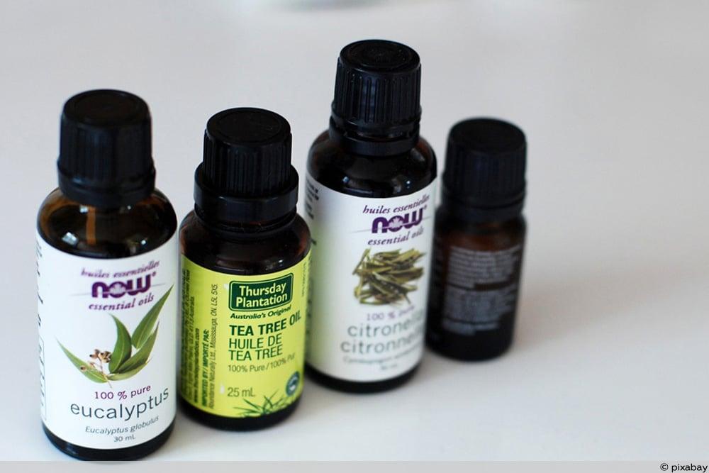 Verschiedene ätherische Öle gegen Wespen