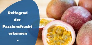 Reifegrad Passionsfrucht bestimmen