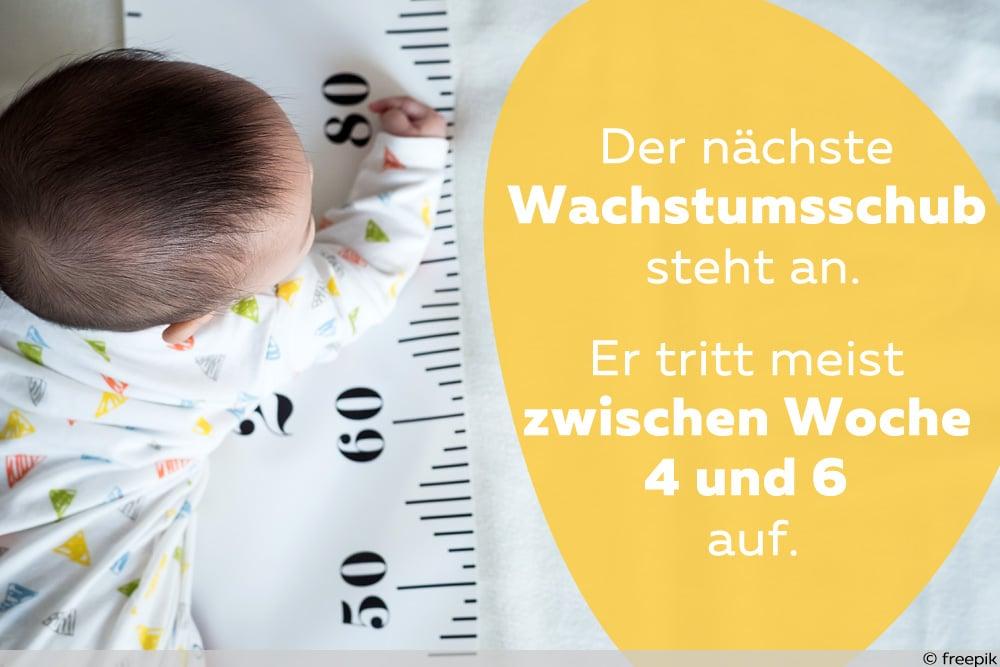 Baby Entwicklung Woche 4
