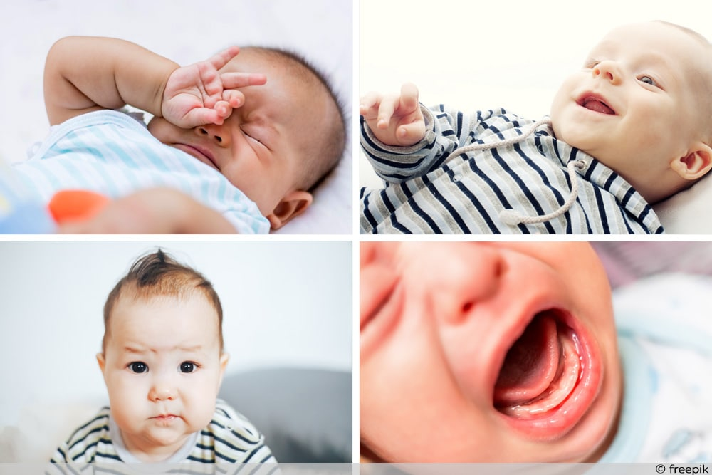 Baby Verhalten