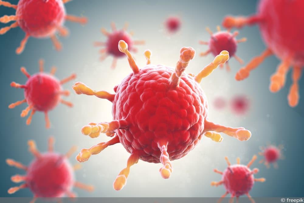 Viren Gelbsucht